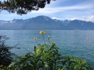 Léman Montreux 5